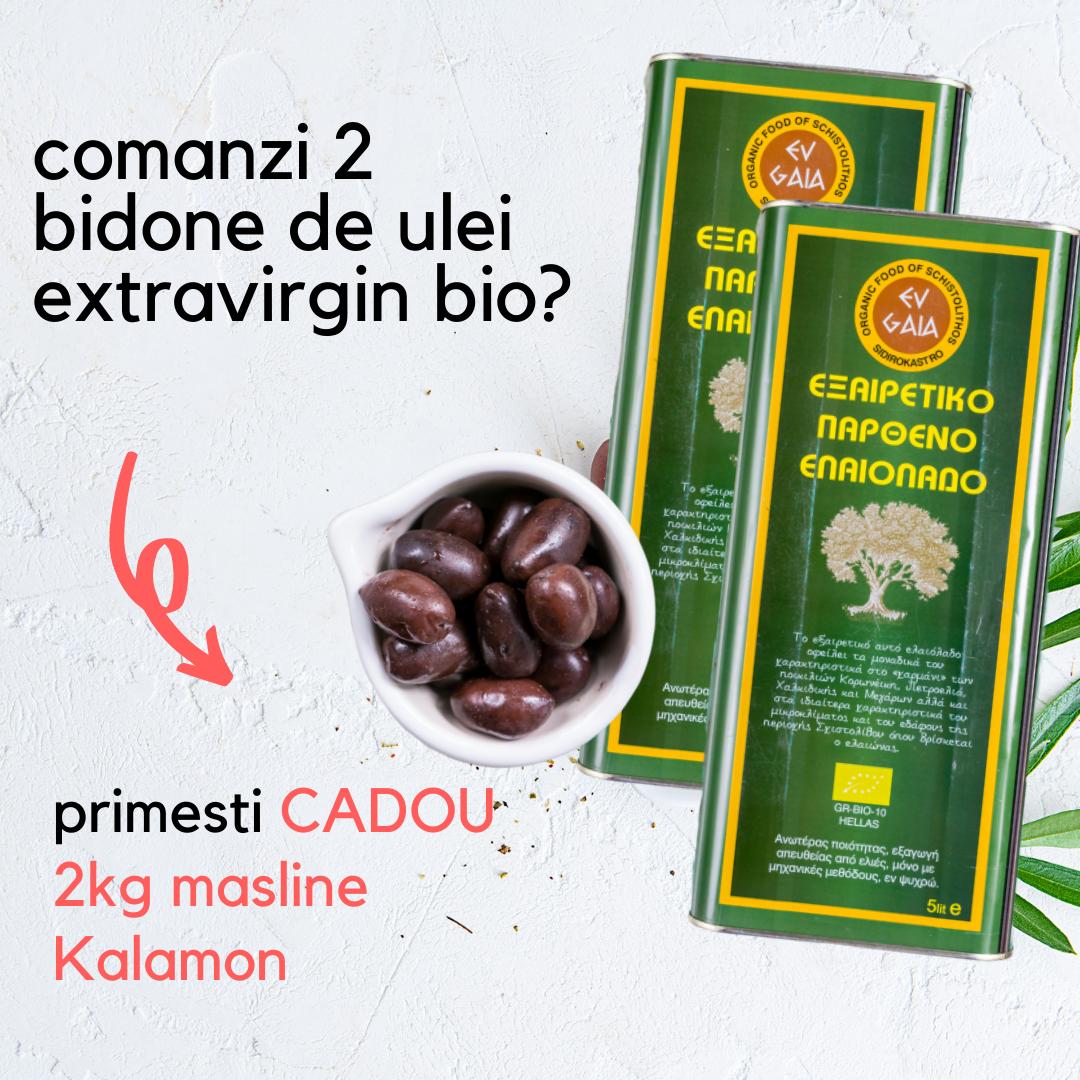 Ulei Masline Extravirgin, BIO 5 L - presat la rece, productia '20, aciditate 0,3